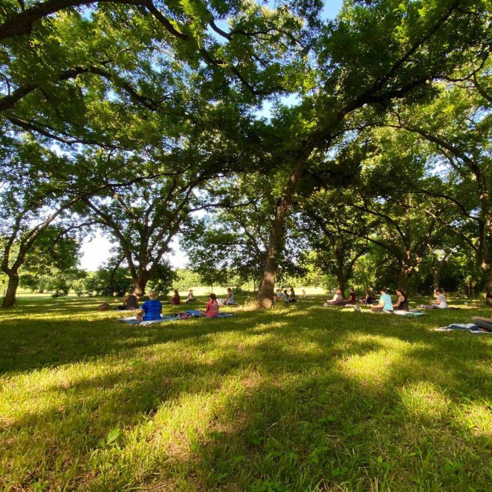 connemara conservancy yoga in the meadow 3